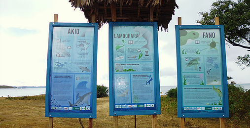 nformation Boards detailing key facts on dugong and seagrass (center) in the local language
